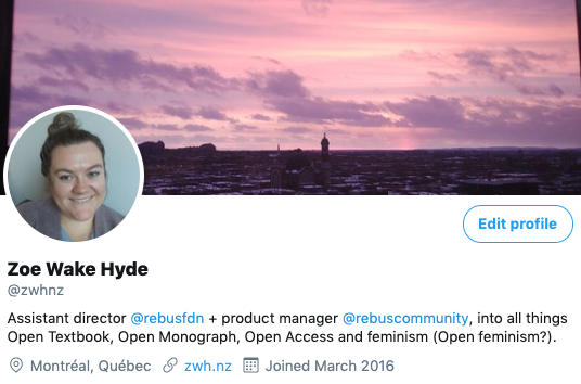 A screen grab of Zoe's twitter bio. In it, she writes that she is interested in open feminism.
